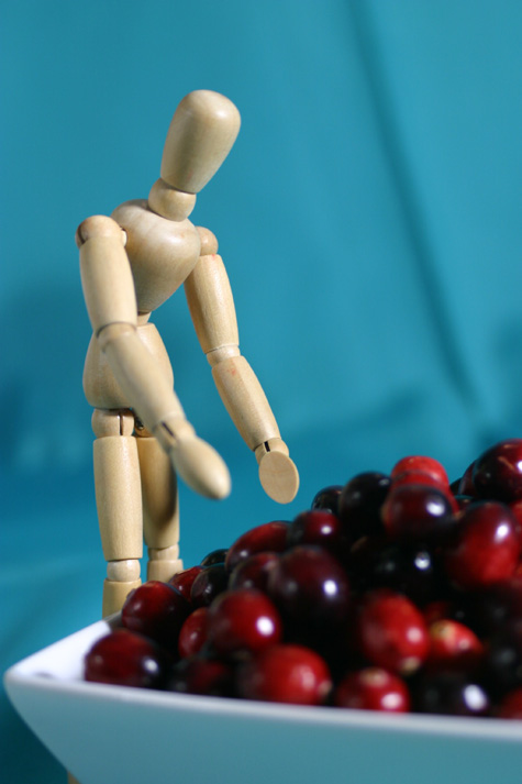 Cranberries with wooden man